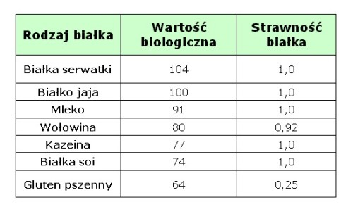 Klasyfikacja niektórych źródeł białka wg wartości biologicznej i strawności. Źródło: U.S Dairy Export Council, Reference Manual for U.S. Whey Products 2nd Edition, 1999 and Sarwar, 1997.